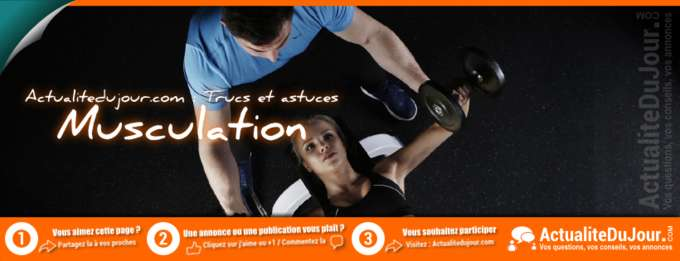 Musculation, programme, exercice et nutrition