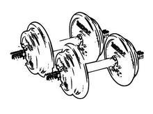 Bien choisir ses haltères pour la musculation