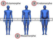 Connaître son morphotype
